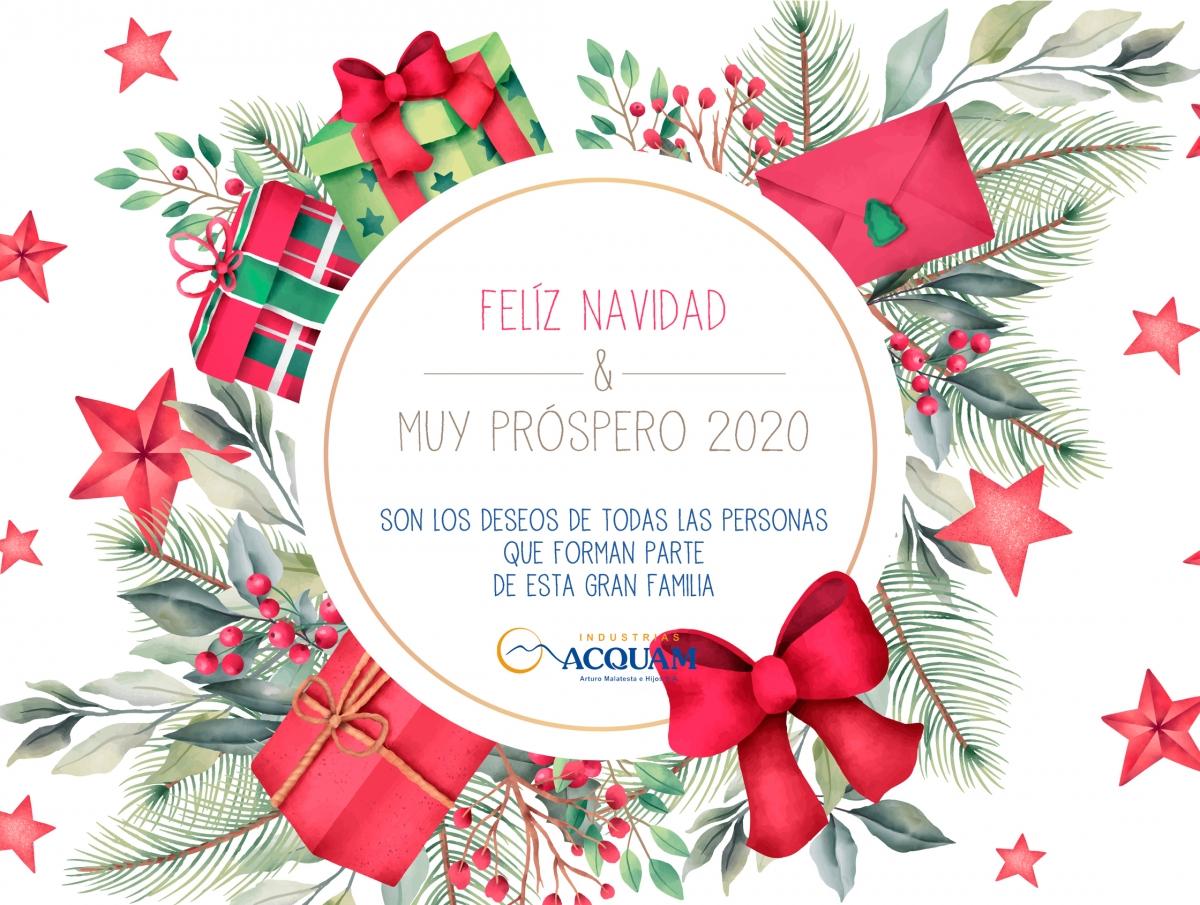 Feliz Navidad & Próspero Año Nuevo